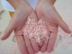 Pink-Sands-Beach-Harbour-Island-Bahamas.Hands