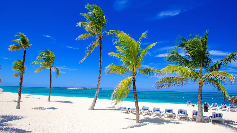 New Providence Island, Bahamas  № 1471741 бесплатно